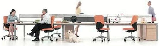 Арт Дизайн — лидер на рынке офисной мебели Мебель для офиса от Арт Дизайн - эталон качества! АРТ-ДИЗАЙН – это развитая федеральная сеть салонов, четыре крупных предприятия по производству мебели для офиса, современные логистические центры, лучшая в отрасли сервисная служба, собственные проектные бюро и дизайн студии в Санкт-Петербурге. АРТ-ДИЗАЙН предлагает Вам нестандартные офисные решения на заказ. Мы можем изготовить любую нестандартную мебель по Вашим проектам. Нестандартные заказы выполняются на мебельном комбинате нашей компании, входящем в состав группы компаний АРТ-ДИЗАЙН. Комбинат АРТ-ДИЗАЙН получил сертификат качества ISO 9001: 2000, подтверждающий, что в работе производства применяются только самые прогрессивные бизнес-процессы и системы управления качеством. АРТ-ДИЗАЙН идет в ногу со временем и производит современную и высококачественную мебель для офиса, отвечающую самым взыскательным запросам функциональности и стиля. В нашем ассортименте представлена эргономичная и удобная офисная мебель собственного производства, лучшая зарубежная и российская мебельная фурнитура и аксессуары. В числе наших партнеров – ведущие мировые производители офисной мебели России и бывших стран СНГ. Это дает Вам неограниченные возможности заказа не только серийной, но и эксклюзивной дизайнерской мебели для офиса. Наш опыт в организации эффективных офисов позволяет оперативно решать интерьерные задачи любой сложности. Мы оказываем полный спектр услуг с индивидуальным подходом к каждому клиенту. С мебелью АРТ-ДИЗАЙН (офисная мебель, мебель для гостиниц, офисные перегородки) и нашими аксессуарами Вы сможете оформить в едином стиле административные и офисные помещения, конференц-залы, холлы, номерной фонд гостиниц и пансионатов, бары и рестораны, а так же домашние кабинеты На счету дизайнеров и архитекторов АРТ-ДИЗАЙН — внушительное количество разработанных и реализованных проектов функциональной офисной мебели. Это офисы многопрофильных холдингов и государственных структур, банко